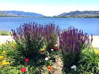 Summer in Osoyoos