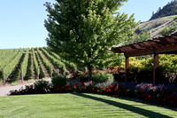 Winery, Osoyoos