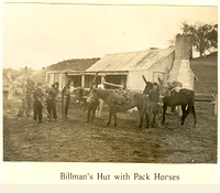Billman's Hut with pack horses